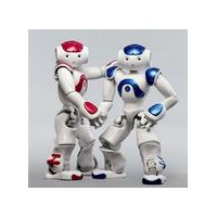 赫瓦 仿人智能机器人