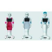 赫瓦 仿生服务机器人