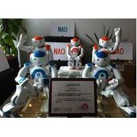 赫瓦 NAO机器人 教学研发机器人